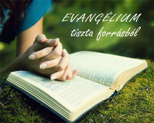 Evangélium tiszta forrásból